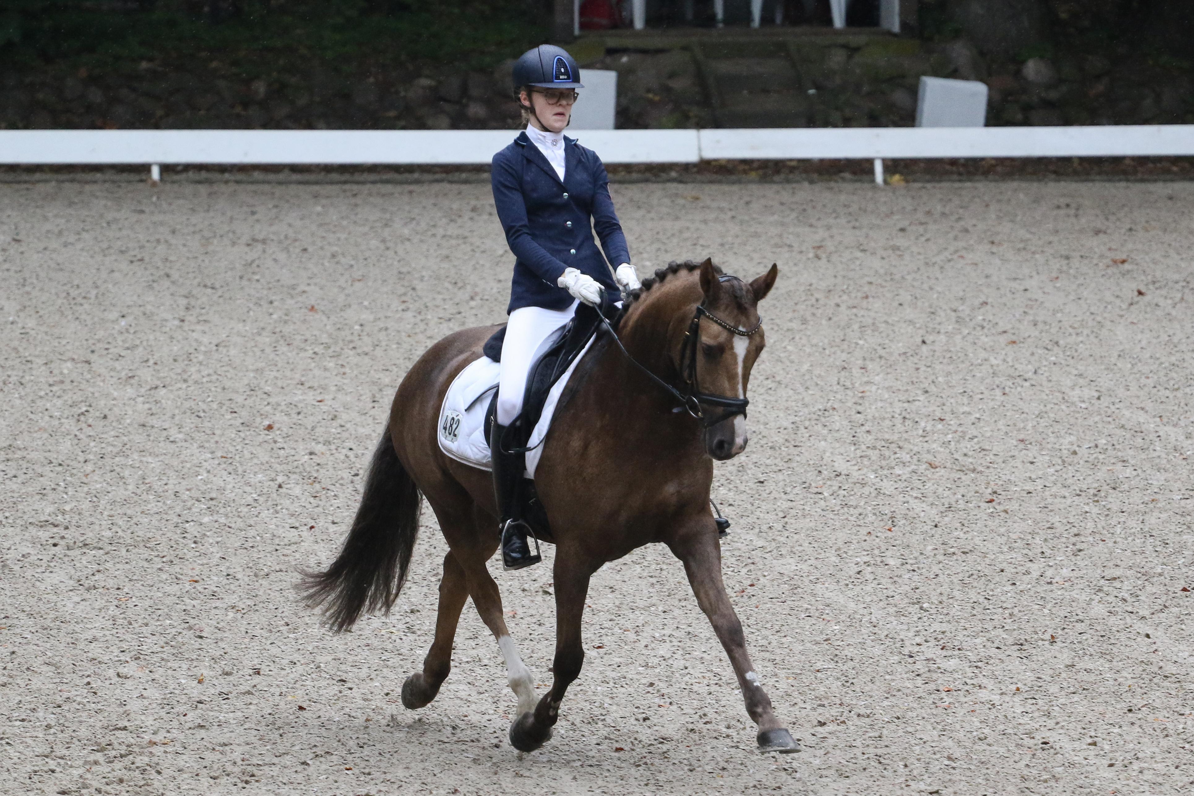 Allegra Schmitz-Morkramer ritt mit Loreley auch bei den Pony-Dressurreitern zum Landesmeistertitel. Foto: Gottmann