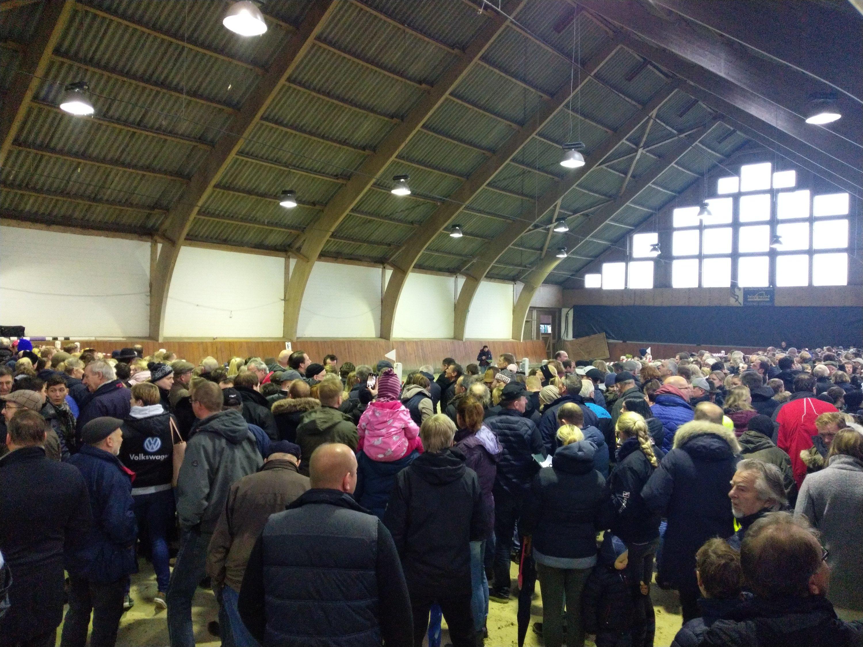 Viele Menschen waren zur Auktion der beschlagnahmten Pferde gekommen. Foto: Gottmann